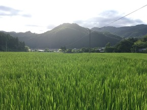 夏のロケ in岡山